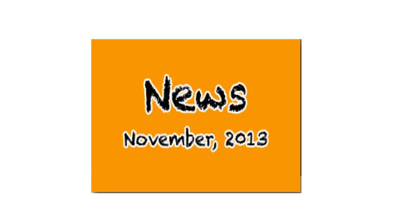 Newsletter - November 2013